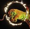 Цирки в Парфентьево